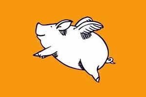 飞猪机票返利是怎么回事?飞猪上买机票靠谱吗?