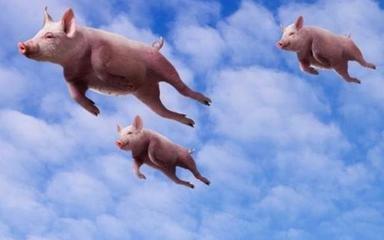 飞猪学生票怎么买?飞猪可以买学生票吗?