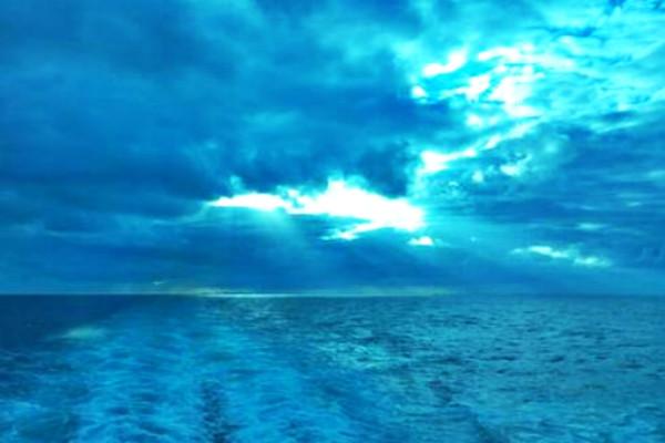 淘宝单类目蓝海怎么打造?运营步骤是什么?